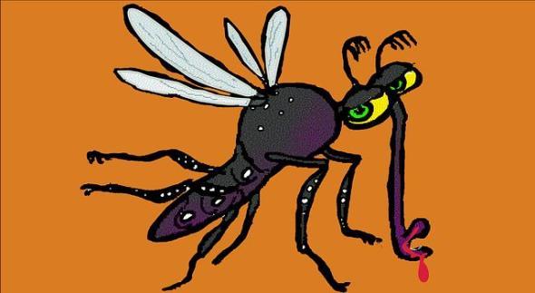 risiko denguefieber in mauritius