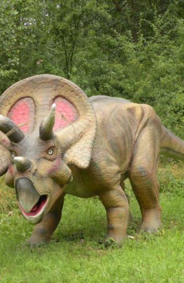 dinopark-ruegen-triceratops