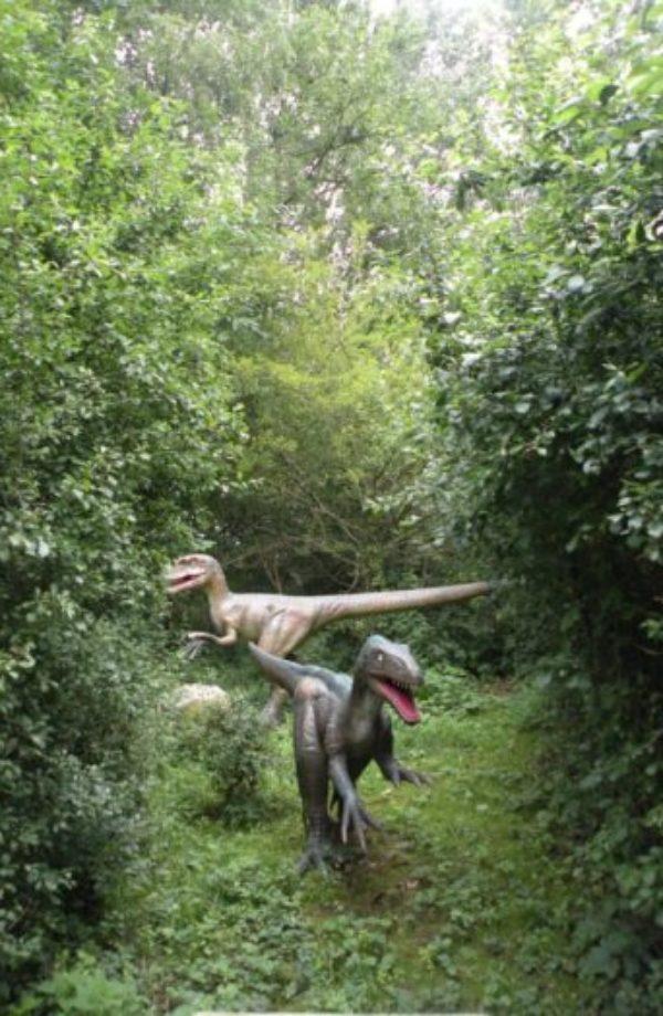dinopark-ruegen-velociraptor