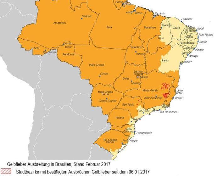 Gelbfieber in Brasilien - Aktuelle Status