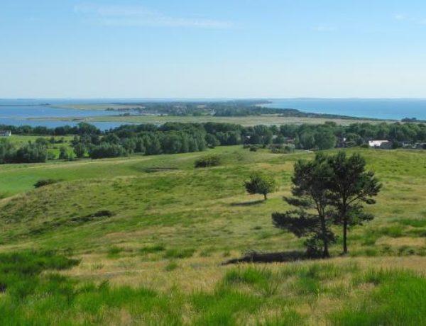 insel-hiddensee-ausblick