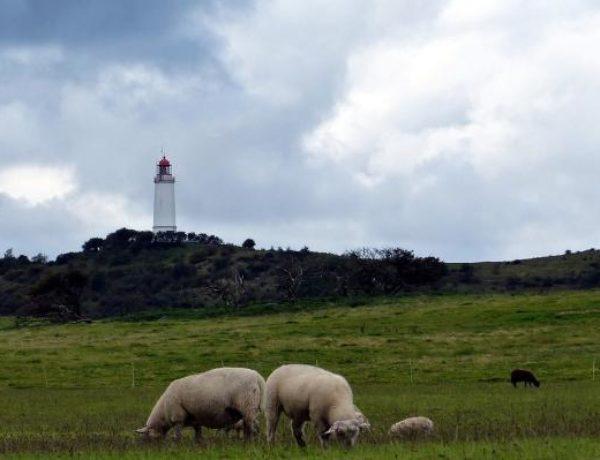 insel-hiddensee-leuchtturm