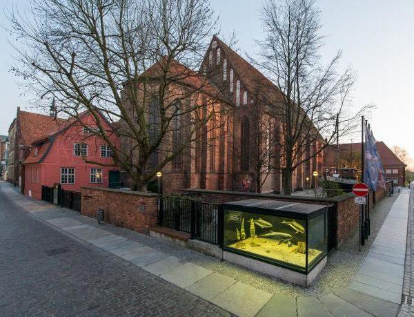 meeresmuseum-stralsund-kloster