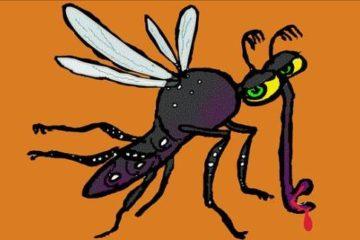Zikavirus als Urlaubskrankheit?