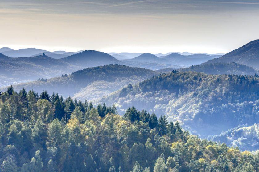 Wanderkarte Pfälzer Wald