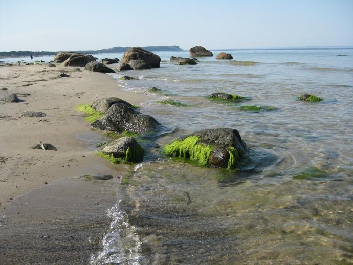 Göhren Rügen Strand
